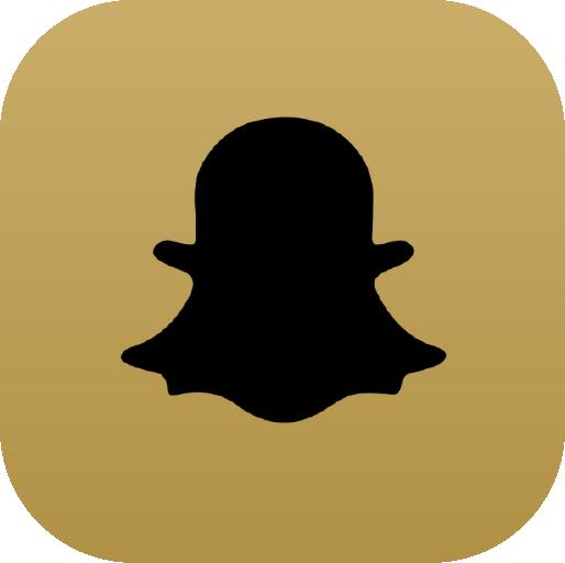 Icons-Black-GoldGradient-Snap