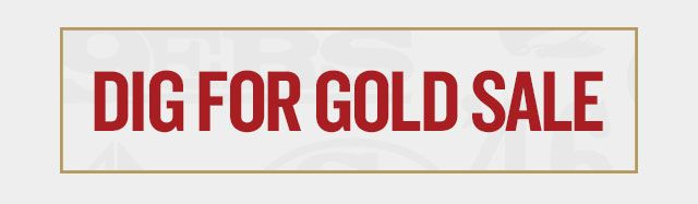 TrainingCamp-Webpage-Dig For Gold