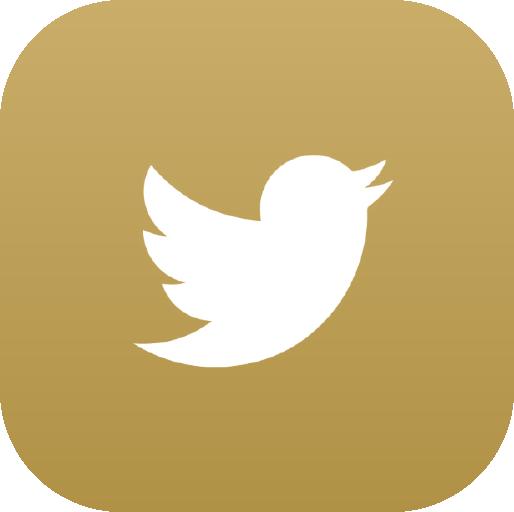 Icons-White-GoldGradient-Twitter