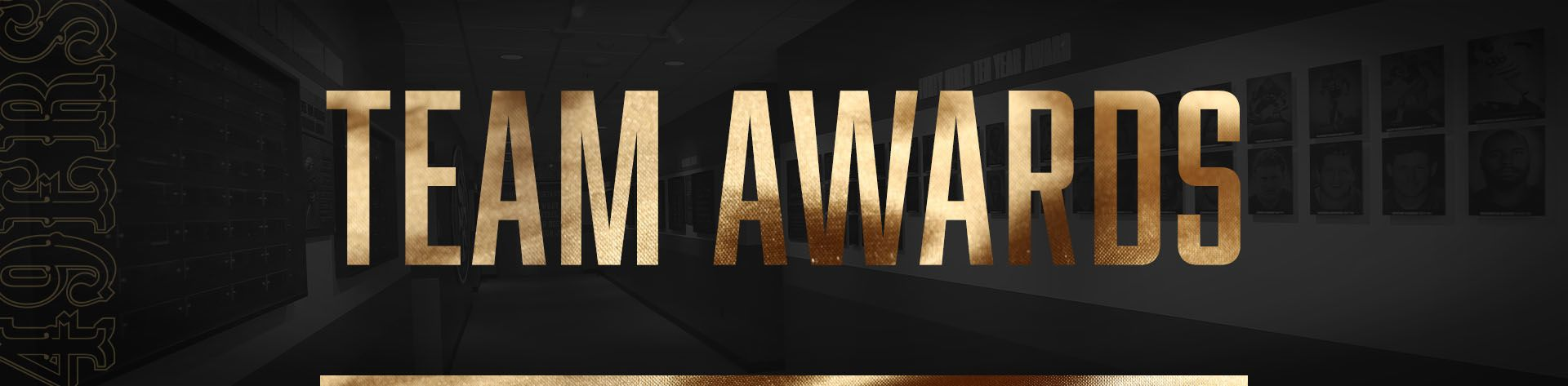 HISTORY-Team Awards