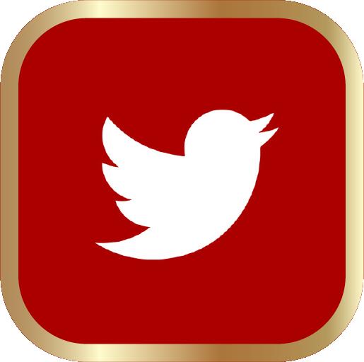 Icons-White-RedwGoldOutline-Twitter