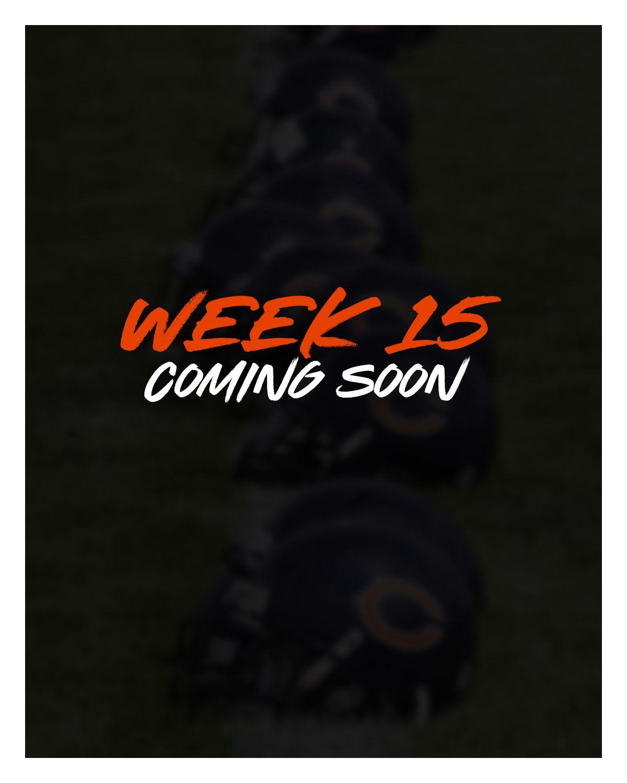 Week 15 - Bears at Vikings