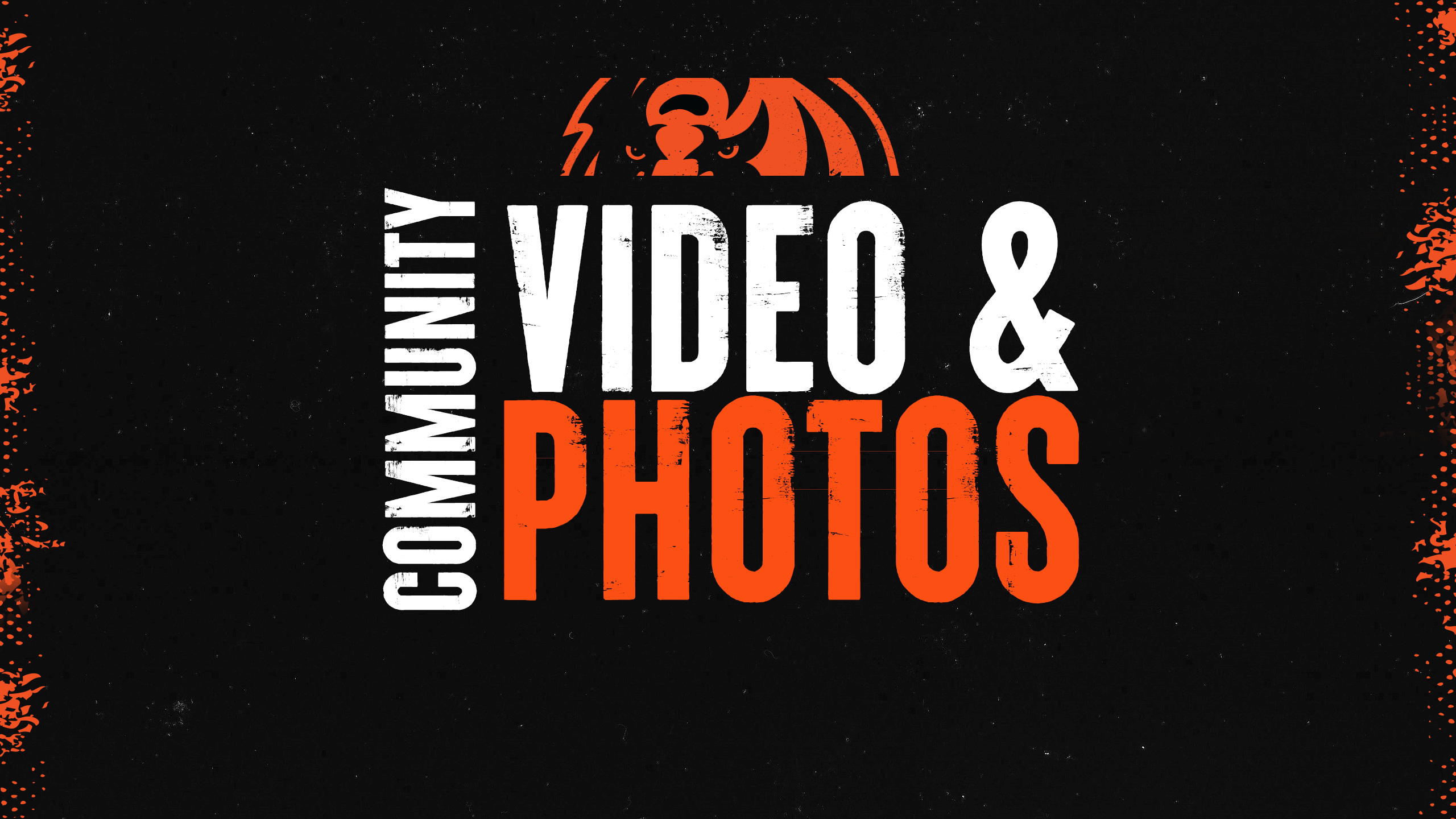 Video and Photo Galleries