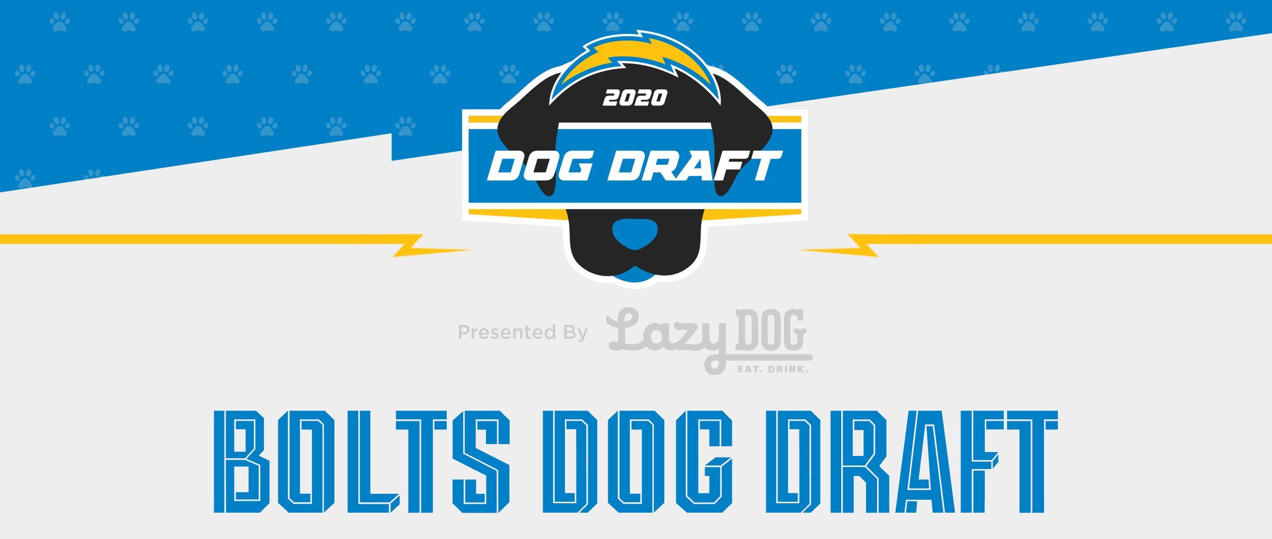 200430_Site_Dog_Draft_Header