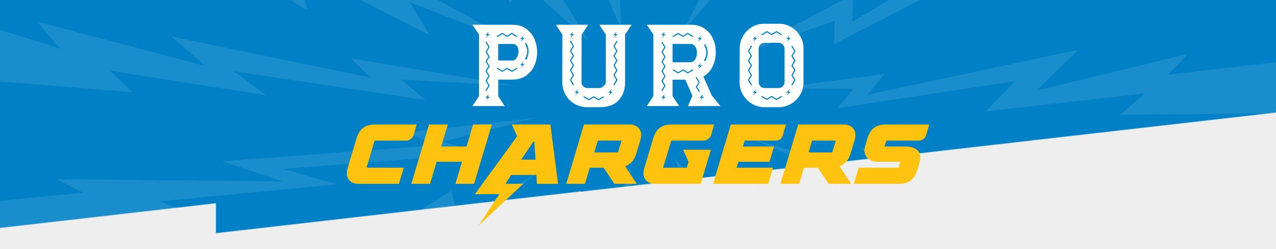 201012_Site_Pure_Chargers_Header