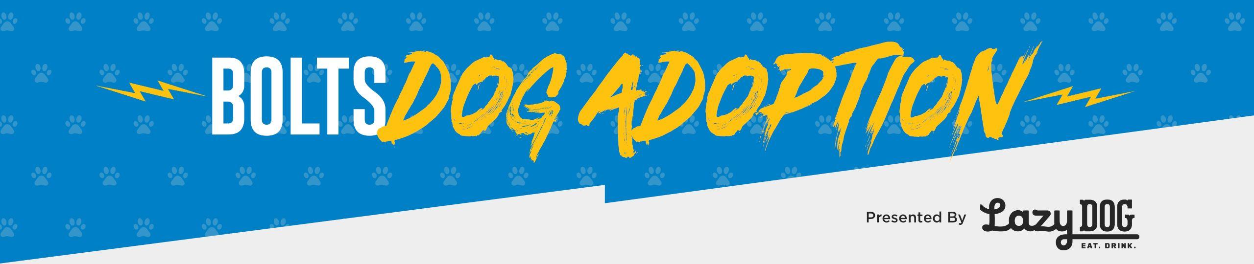 200828_Virtual_Dog_Adoption_Promos_Header