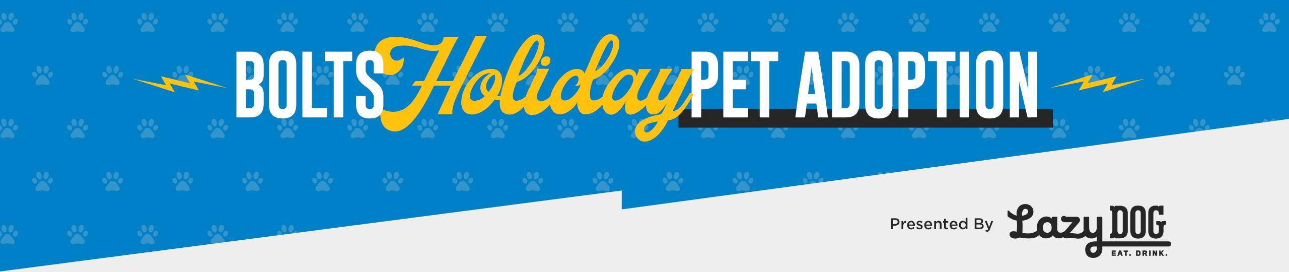 201210_Virtual_Pet_Adoption_Holiday_Header
