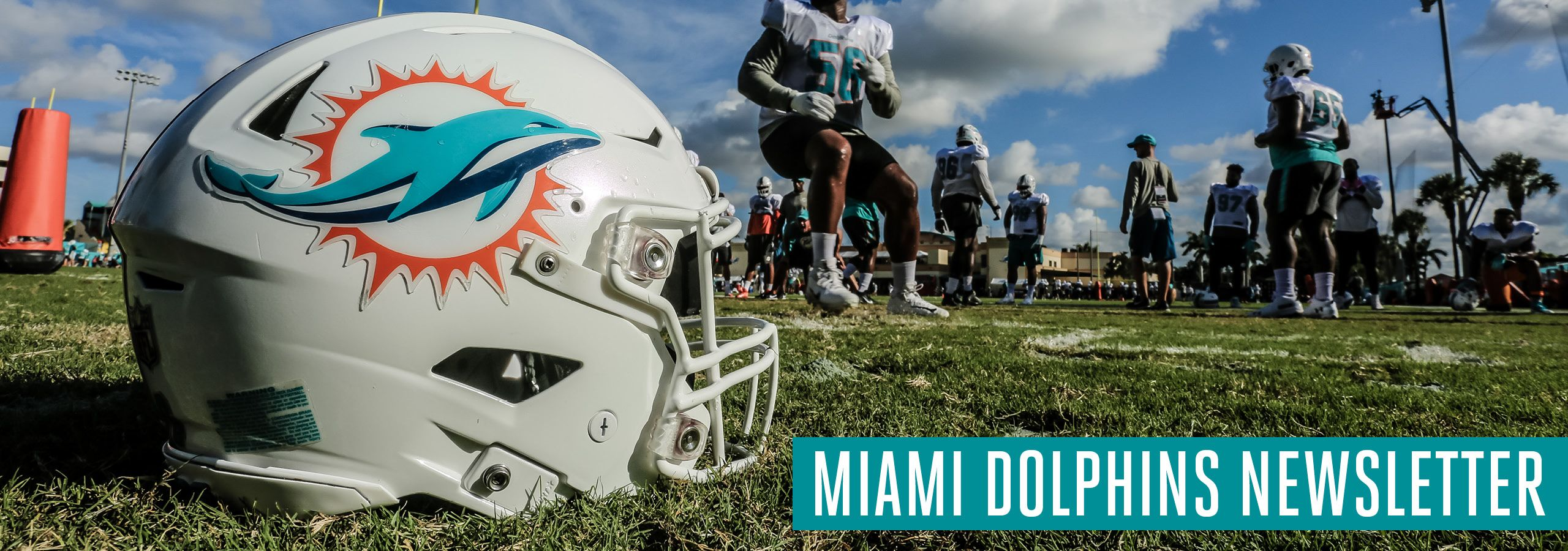 Graphic: Header - Miami Dolphins Newsletter