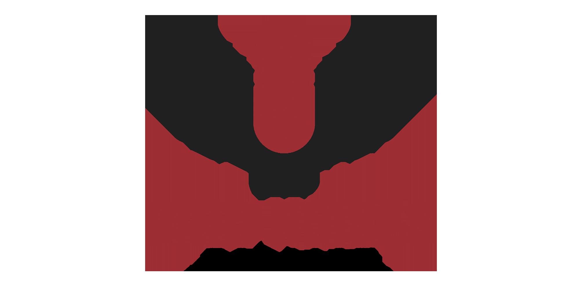 Bird Noises