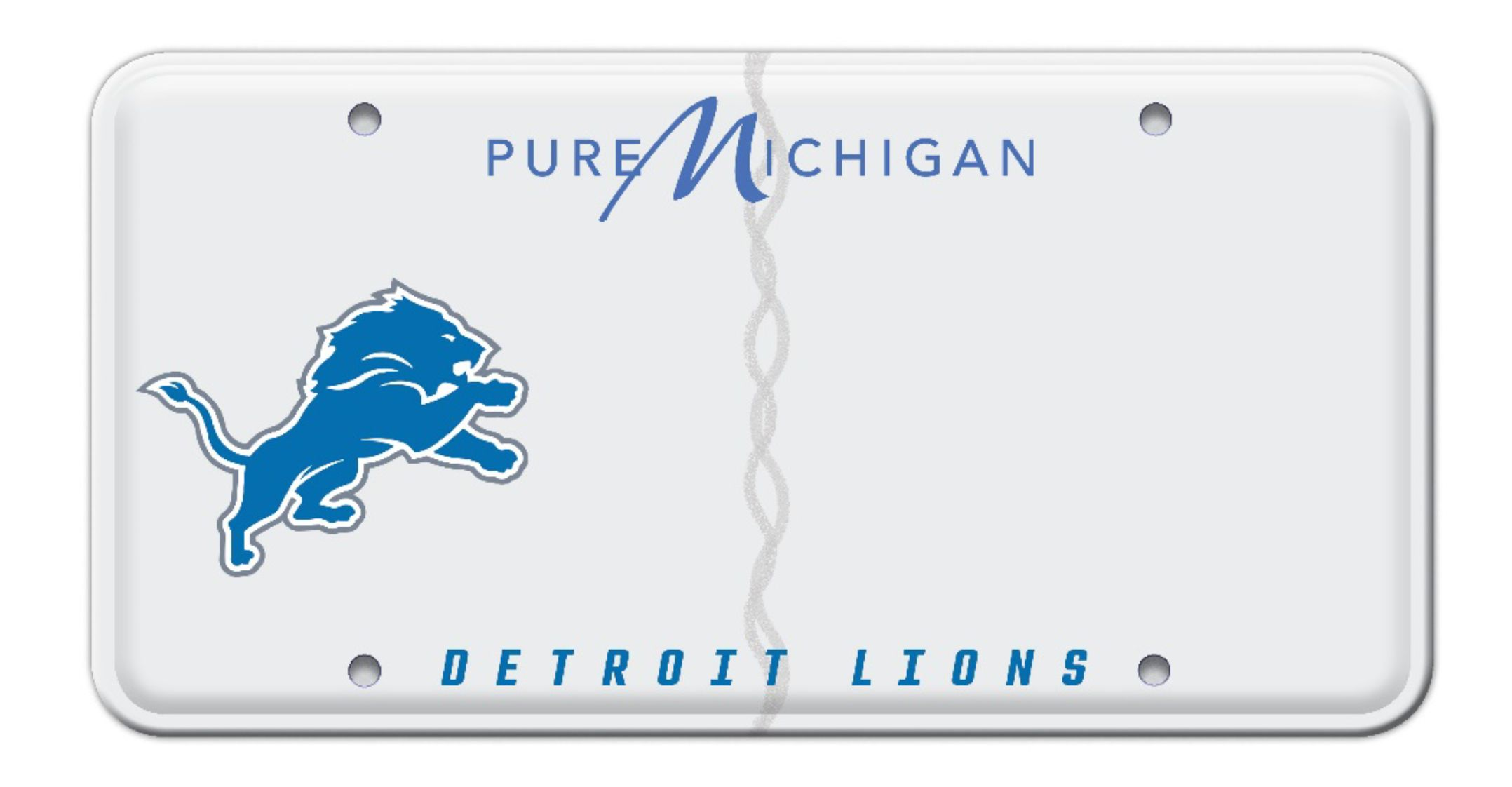 lions-license-plate