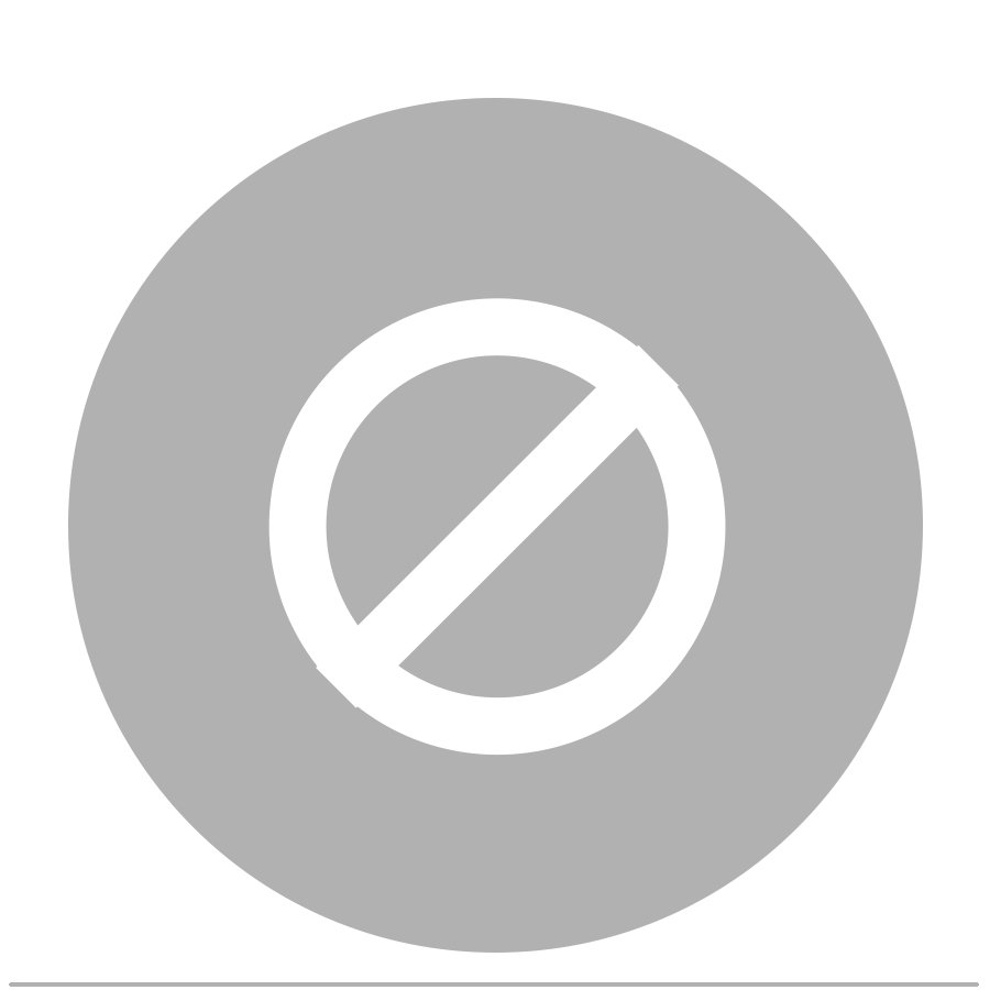 no-bags-icon