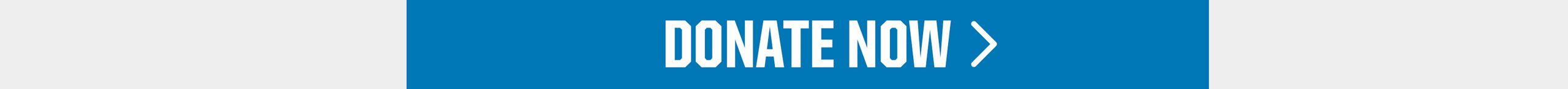 donate-now-btn