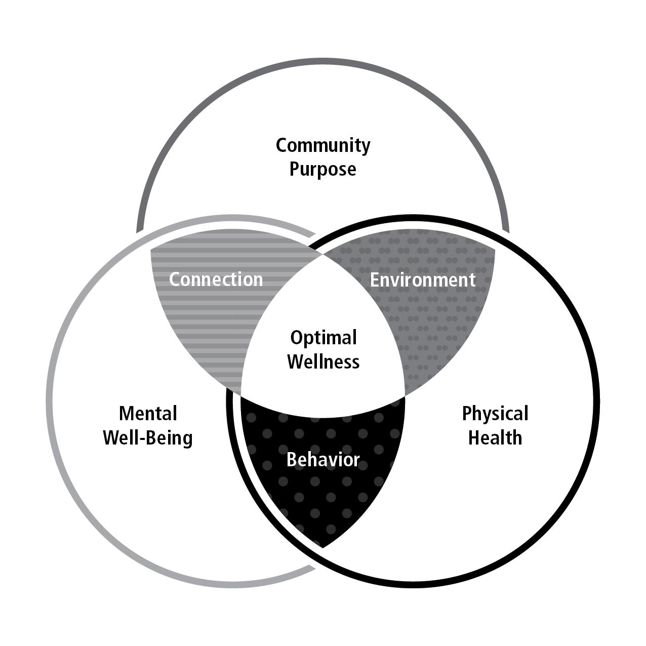 Raiders-FIT-Venn-Diagram-v2-01