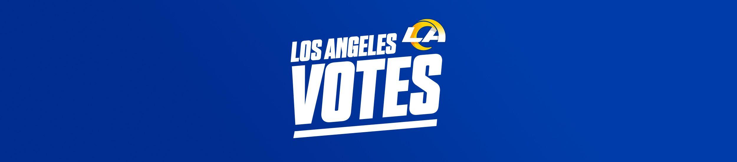 Web_Vote_la vote