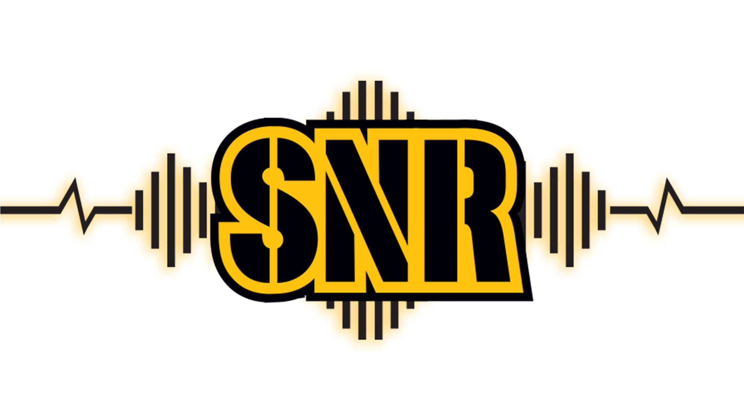 Steelers Nation Radio (SNR)
