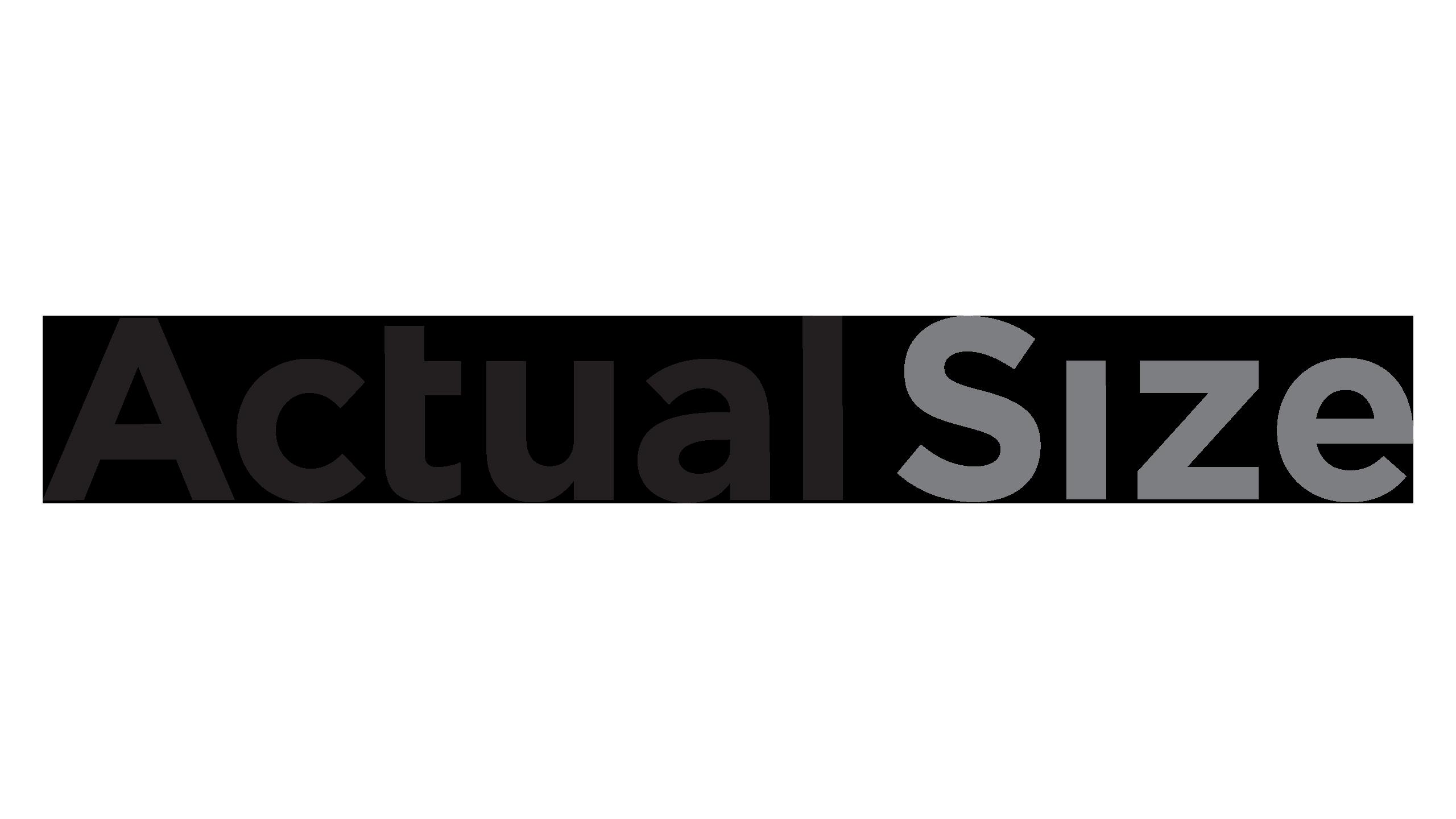 Logo_Actual_Size_2020