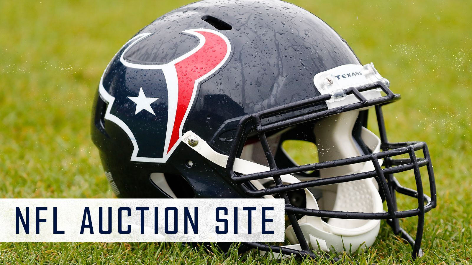 NFL Auction Site