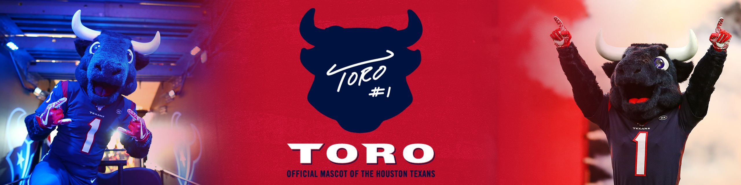 TORO, the official mascot of the Houston Texans