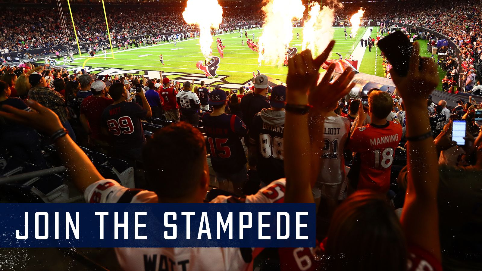 Join the Stampede