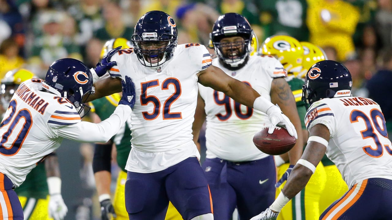 Image result for bears defense""