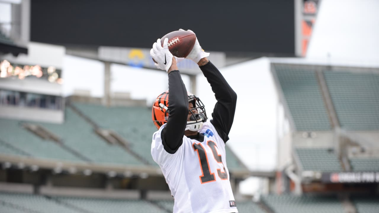 Bengals wide receiver Auden Tate does his part to help the Tampa ...