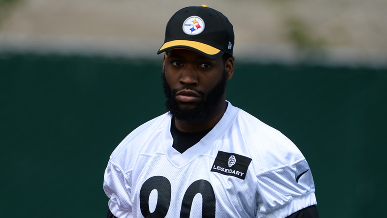 Getting to Know: Ladarius Green
