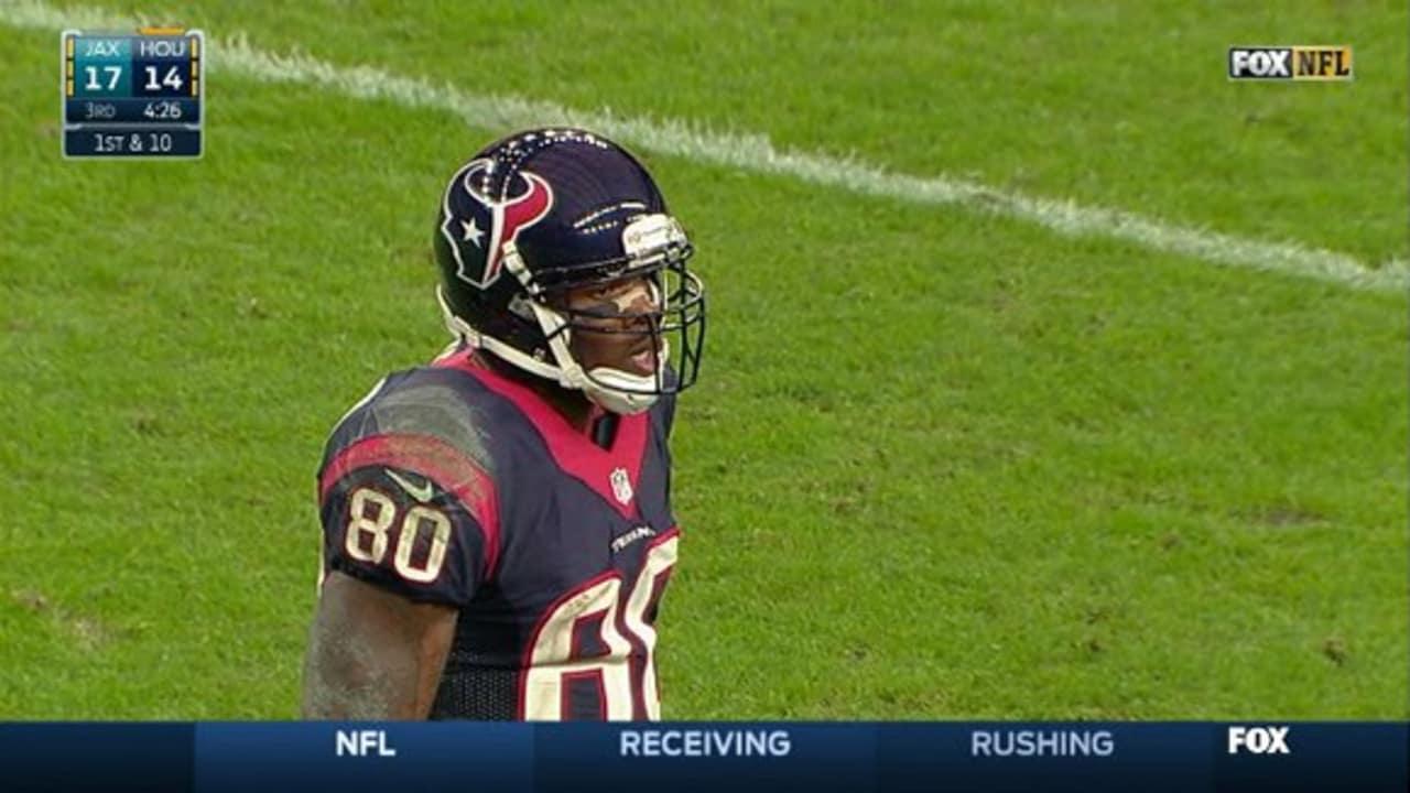 Andre Johnson highlights