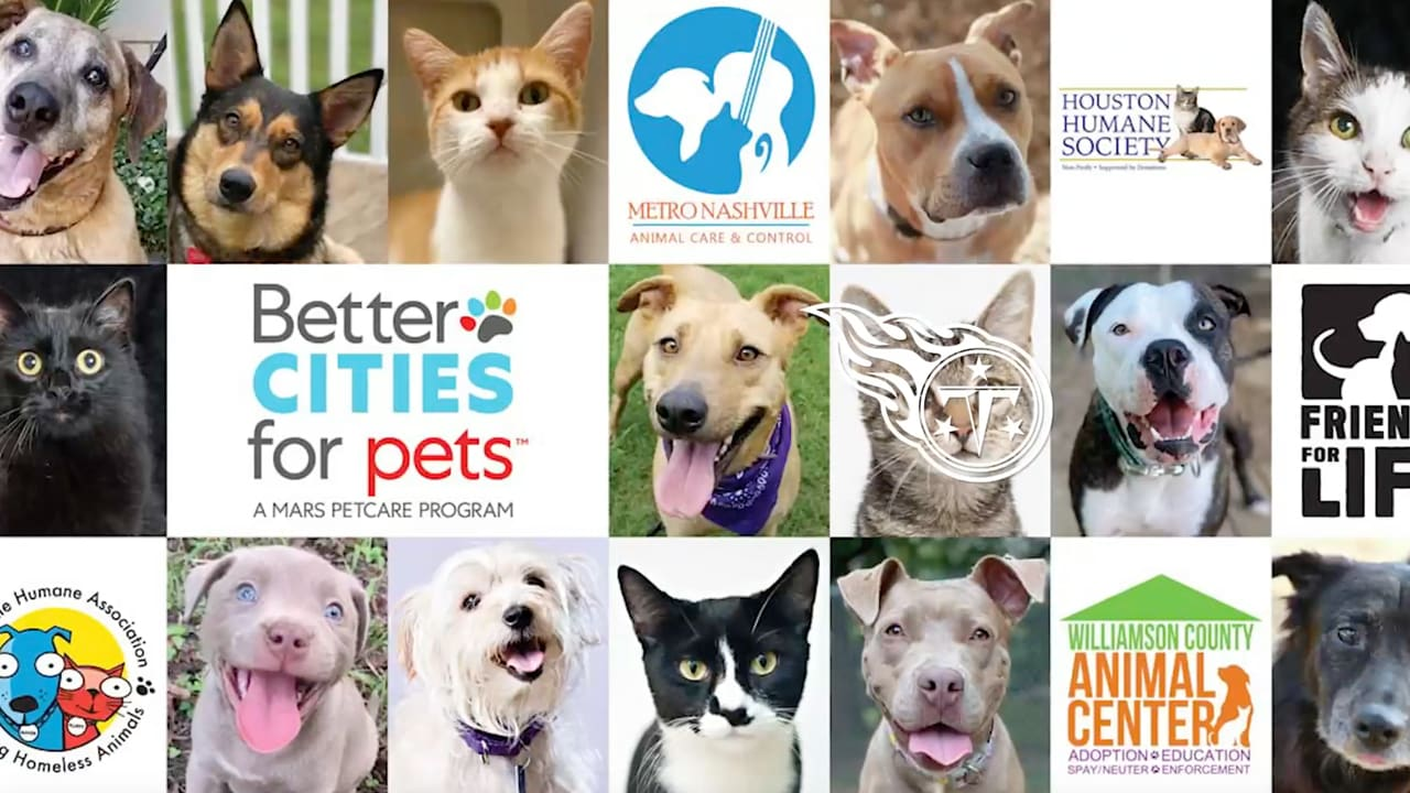 Better Cities for Pets Adoption Weekend