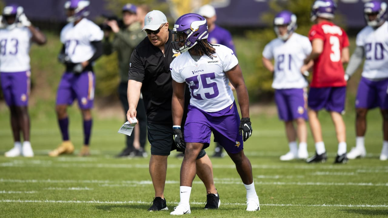 a4377748 Polamalu on 'Good Group' of 2019 Vikings RBs: 'They Know How to Prepare'
