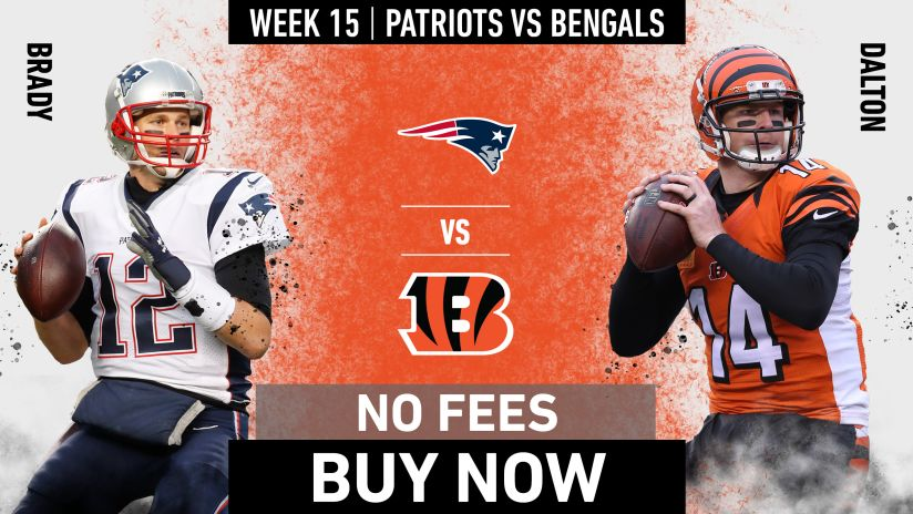 Game Preview Patriots At Bengals Smith says he would not mind if the patriots run up the score vs. game preview patriots at bengals