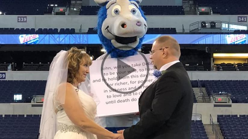 3 Weddings and A Mascot