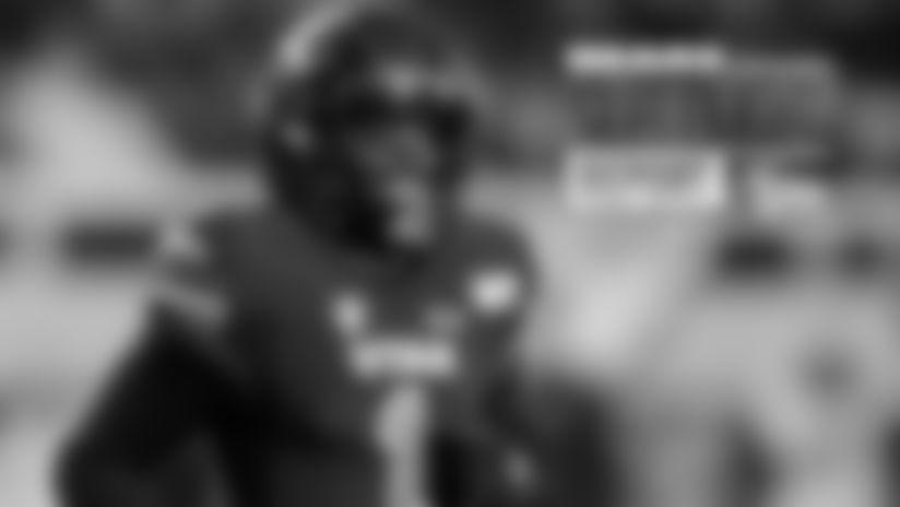 johnson-draft-report-042420
