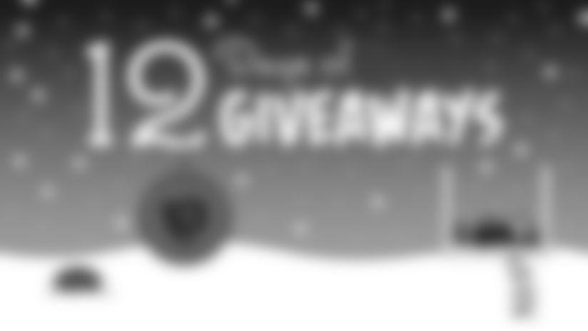 12-days-Bears-giveaways-main