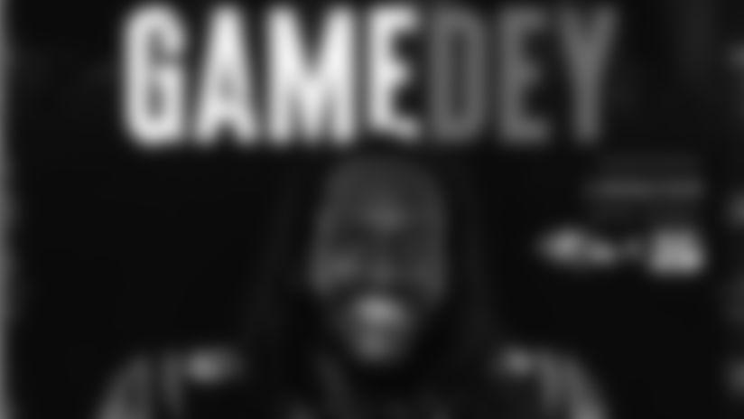 Gamedey Program - Game 8 vs. Baltimore Ravens