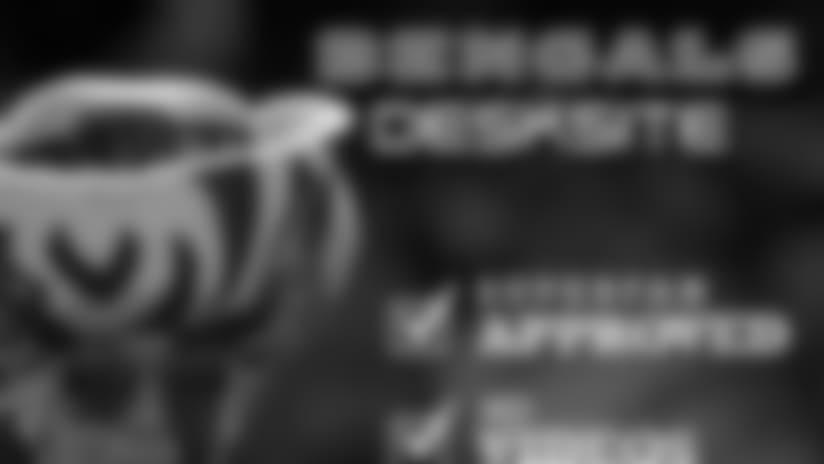 Bengals-Superfan-300x250-Ad.jpg
