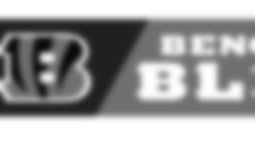 bengals-blitz-art.jpg