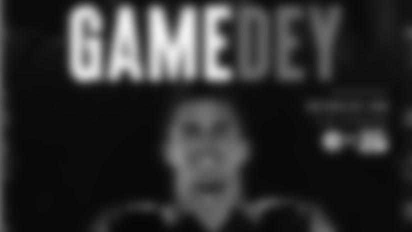 Gamedey Program - Game 7 vs. Pittsburgh Steelers