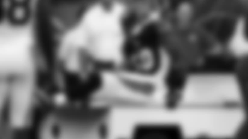 lamur-injury130829_630.jpg