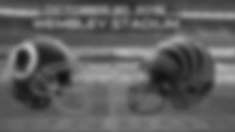 bengals-uk-banner-art.jpg