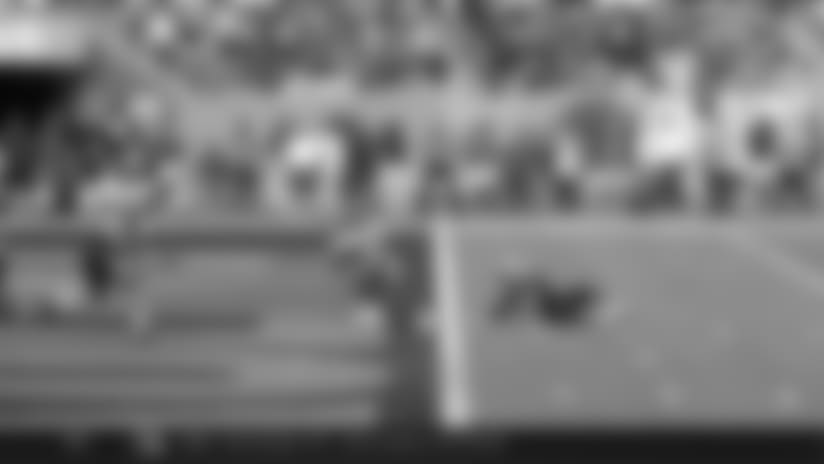 Ryan Fitzpatrick Touchdown Pass to Adam Humphries | Bucs vs. Panthers Highlights