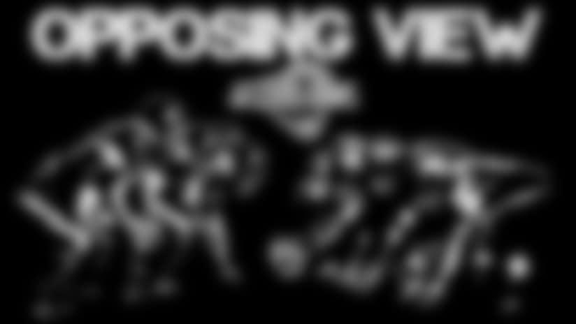 2014-OPP-VIEW-STL1.jpg