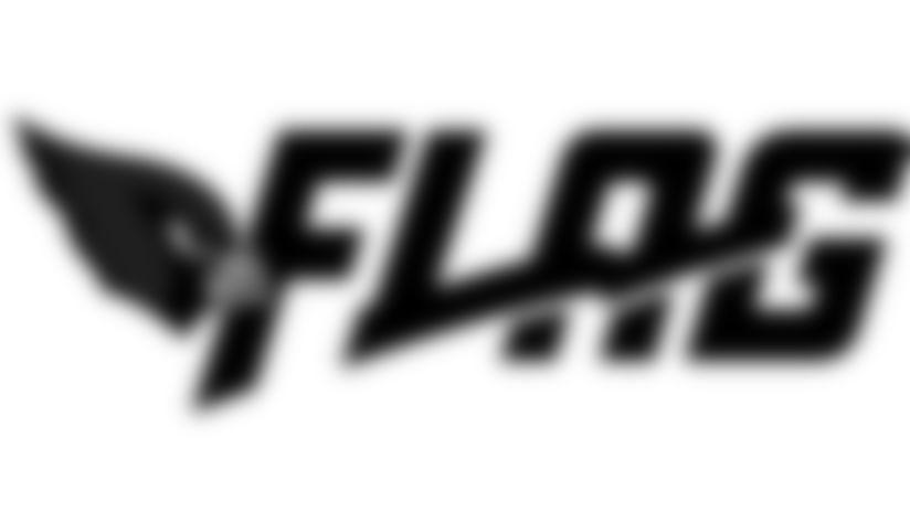 Arizona Cardinals NFL Flag 2020 Logo