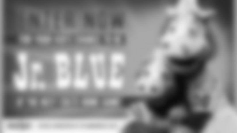 Meijer Jr. Blue