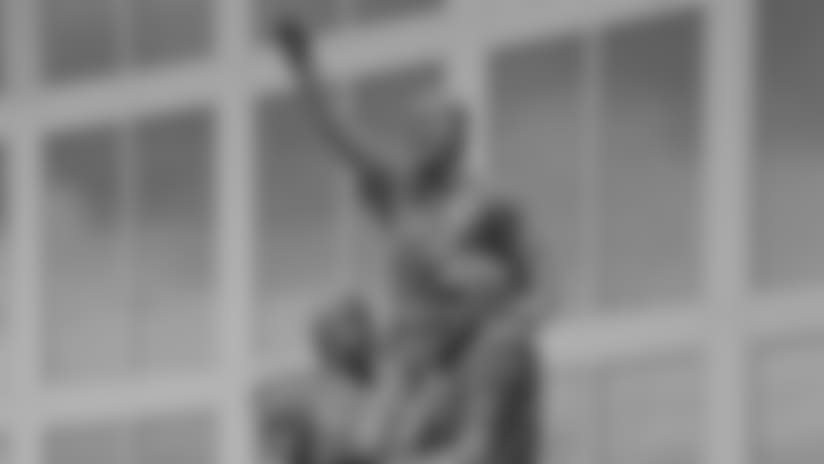 don-shula-statue.jpeg