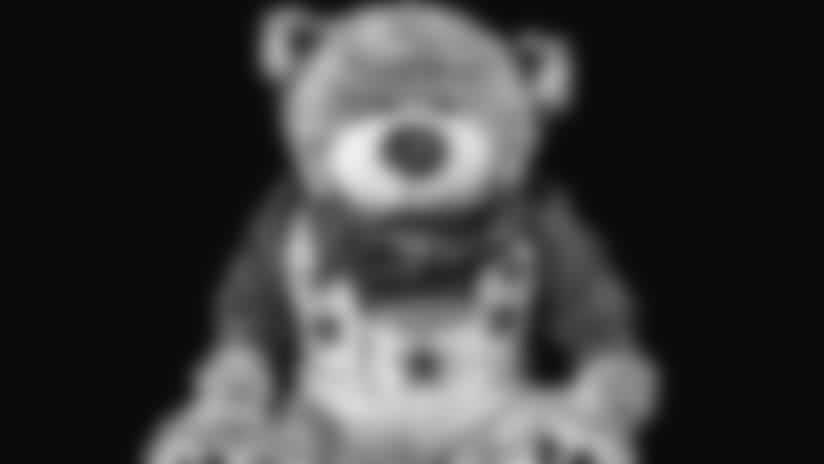dcc_abbey_bear_in_the_smithsonian1.jpg