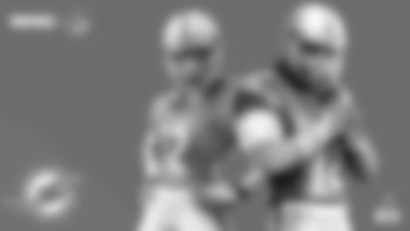 BR06_NFL_Social_TeamArt_Dolphins copy