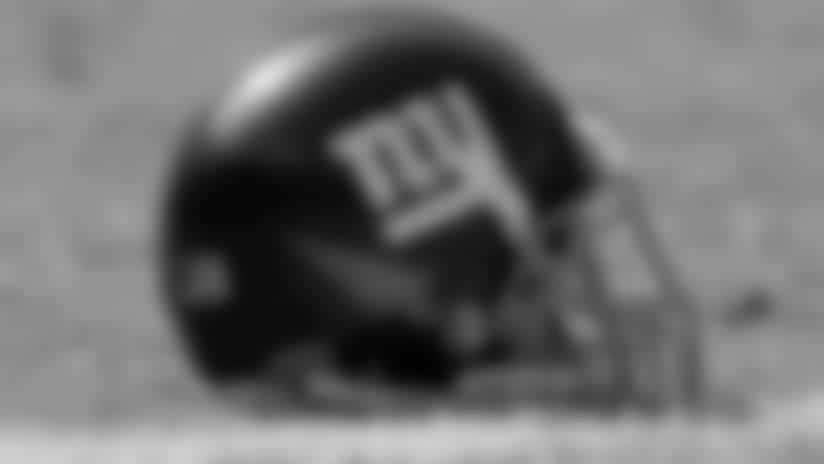 helmet-new-11217.jpg