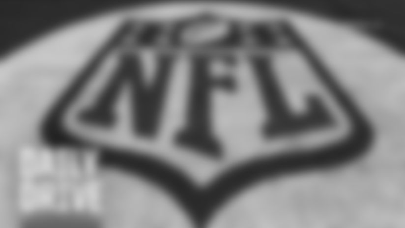 NFL Logo shield