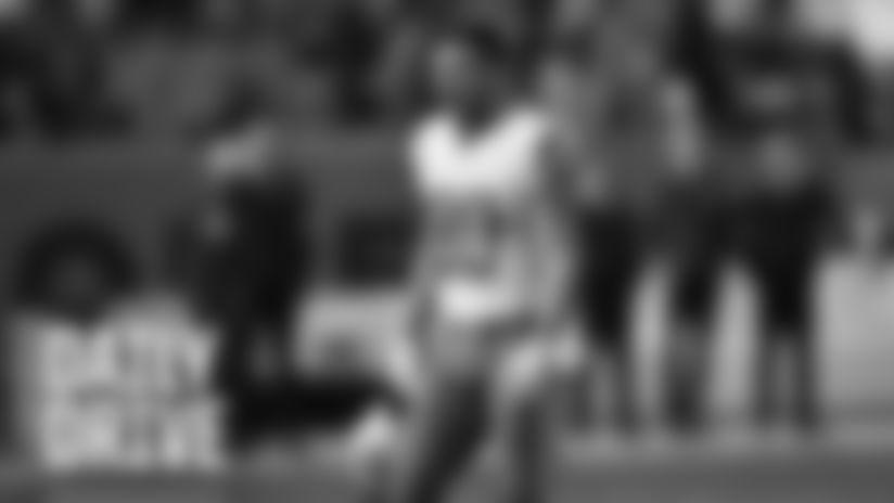 Wide receiver Danny Amendola