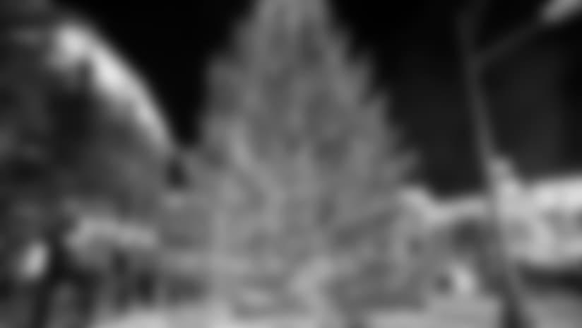 151107_tree_inside.jpg